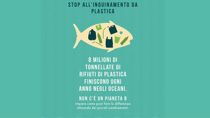 11 prodotti plastic free su amazon