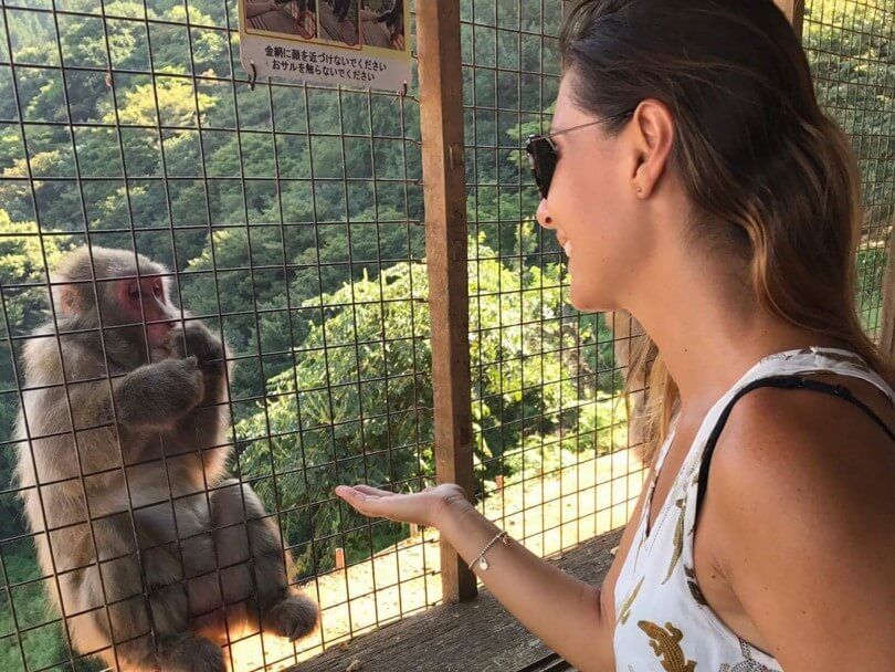 Cosa vedere ad Arashiyama